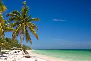 Dreamstime large beach